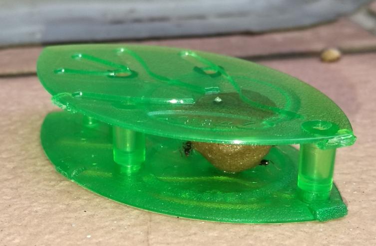 ウルトラ巣のアリフマキラー